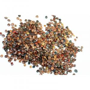 Sementes de SANSÃO DO CAMPO - Embalagem de 01 kg