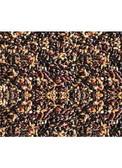 Sementes de CAPIM SUDÃO IPA SUDAM 4202 - Embalagem 40 kg