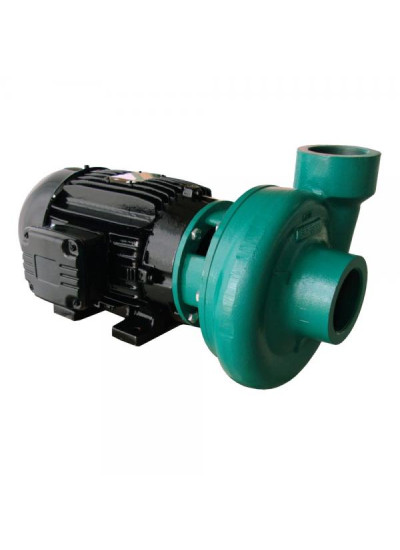 "Motobomba Elétrica Mono 220/440V Centrifuga Monoestágio 2 1/2"" x 2 1/2"" - ECS-750 M/T - Eletroplas"