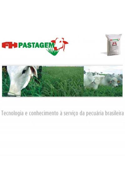 Adubo FH Pastagem Formação e Reforma 30% P2O5 - Saco 50 kg