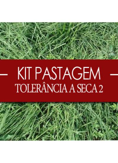 Super KIT TOLERÂNCIA A SECA 2 Para 2 ha - MASSAI INCRUSTADO + ESTILOSANTES CAMPO GRANDE VC 60%