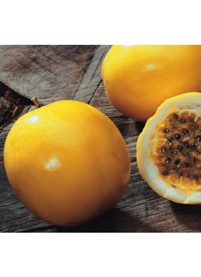 Sementes de Maracujá Amarelo - Lata 100g - Feltrin