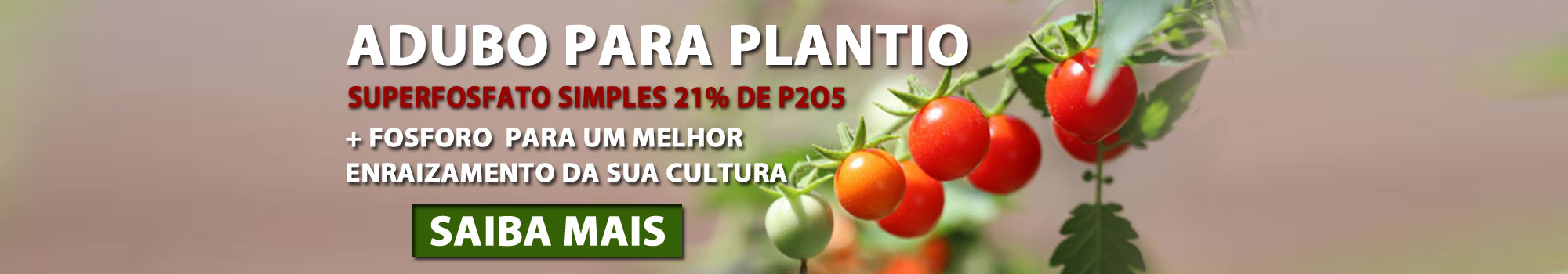 Fullbanner-Adubo-Superfosfato Simples 21% de P2O5